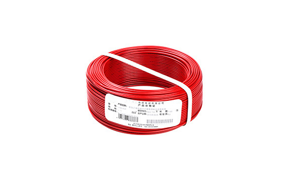 BVVB Cable 21