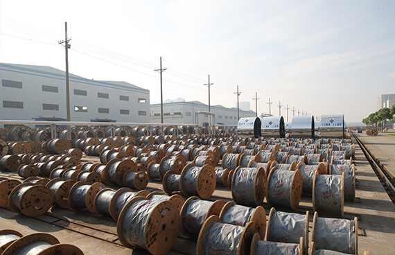 Steel Wire Armored Cable Manufacturer